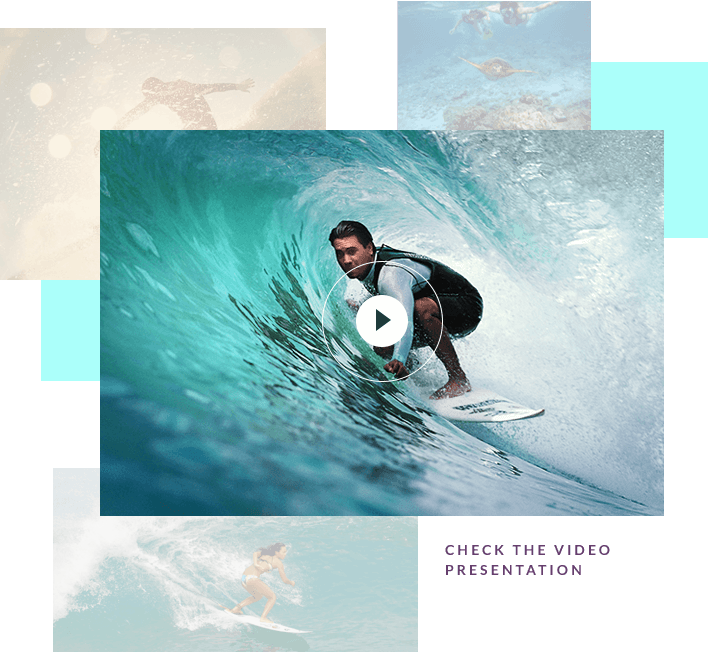 Learn more about surfing in Brazil